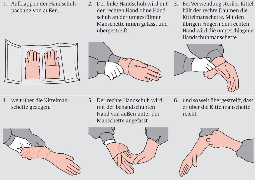 Schön Anatomie Eines Daumens Ideen - Anatomie Ideen - finotti.info