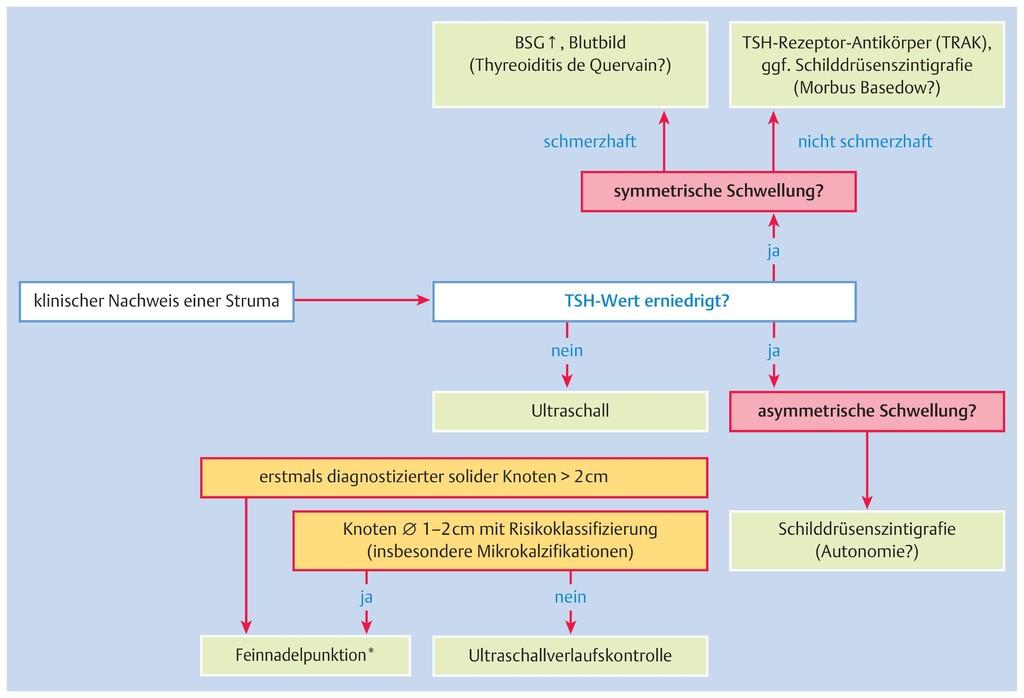 Ungewöhnlich Mediastinalen Knoten Zeitgenössisch - Anatomie Von ...