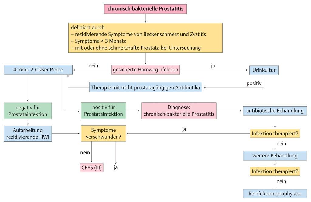 akute bakterielle prostatitis therapie