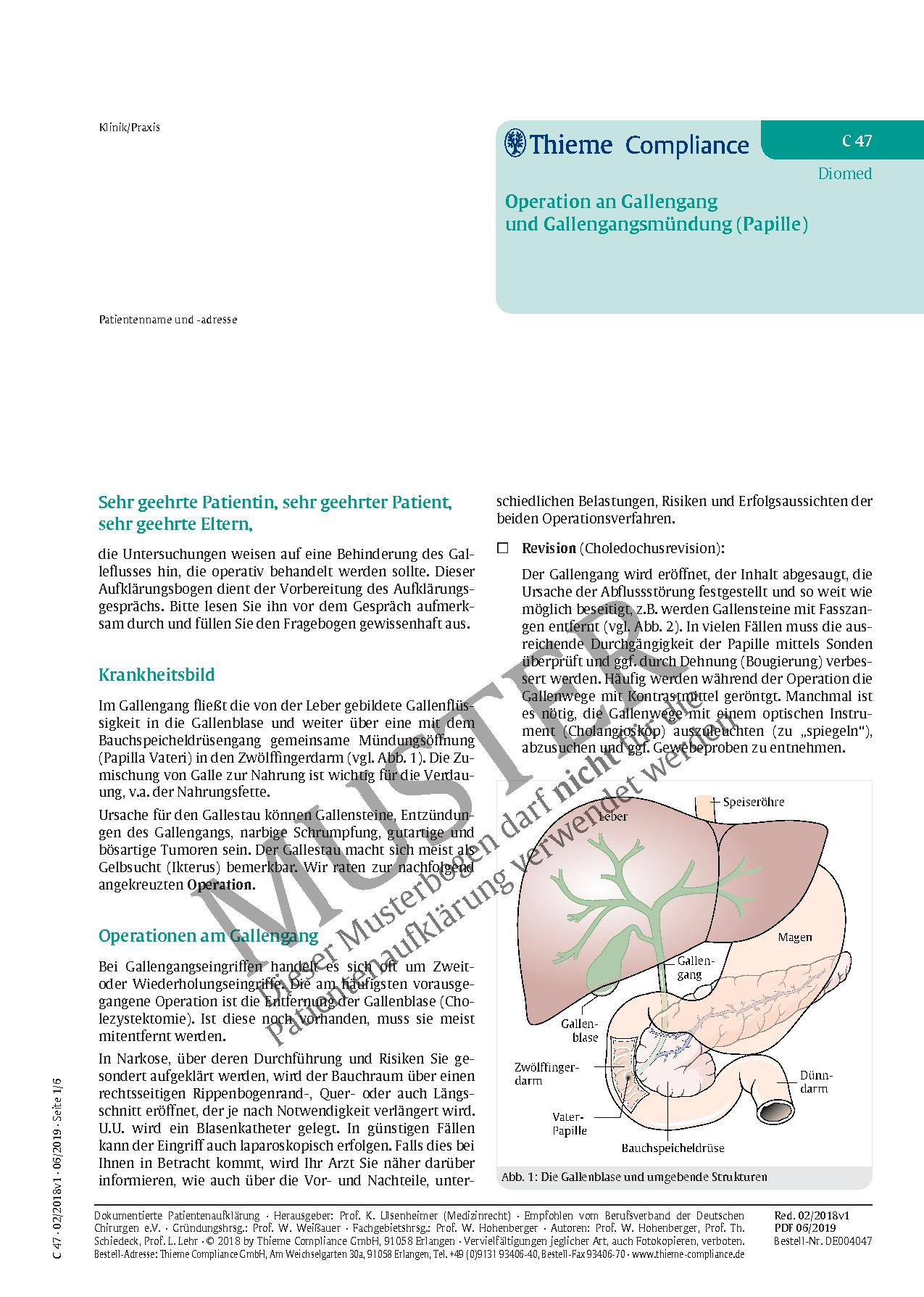 Groß Intrahepatischen Gallengang Anatomie Bilder - Anatomie Von ...