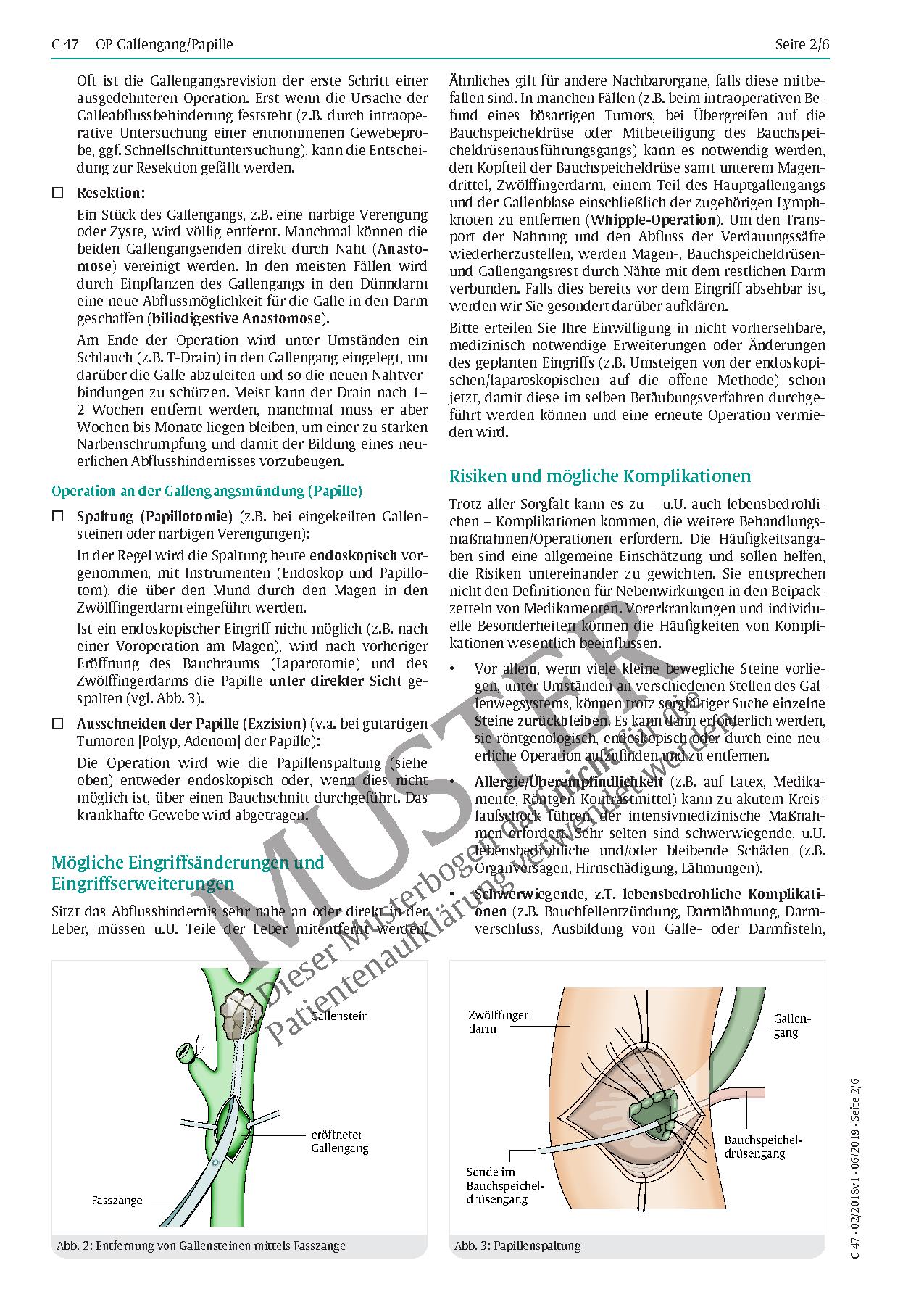 Schön Beweise Für Anatomie Zeitgenössisch - Menschliche Anatomie ...
