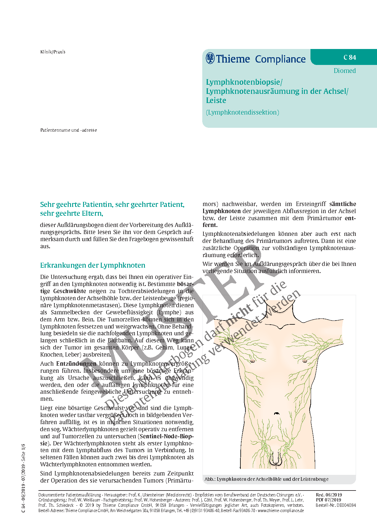 Beste Anatomie Der Leiste Zeitgenössisch - Menschliche Anatomie ...