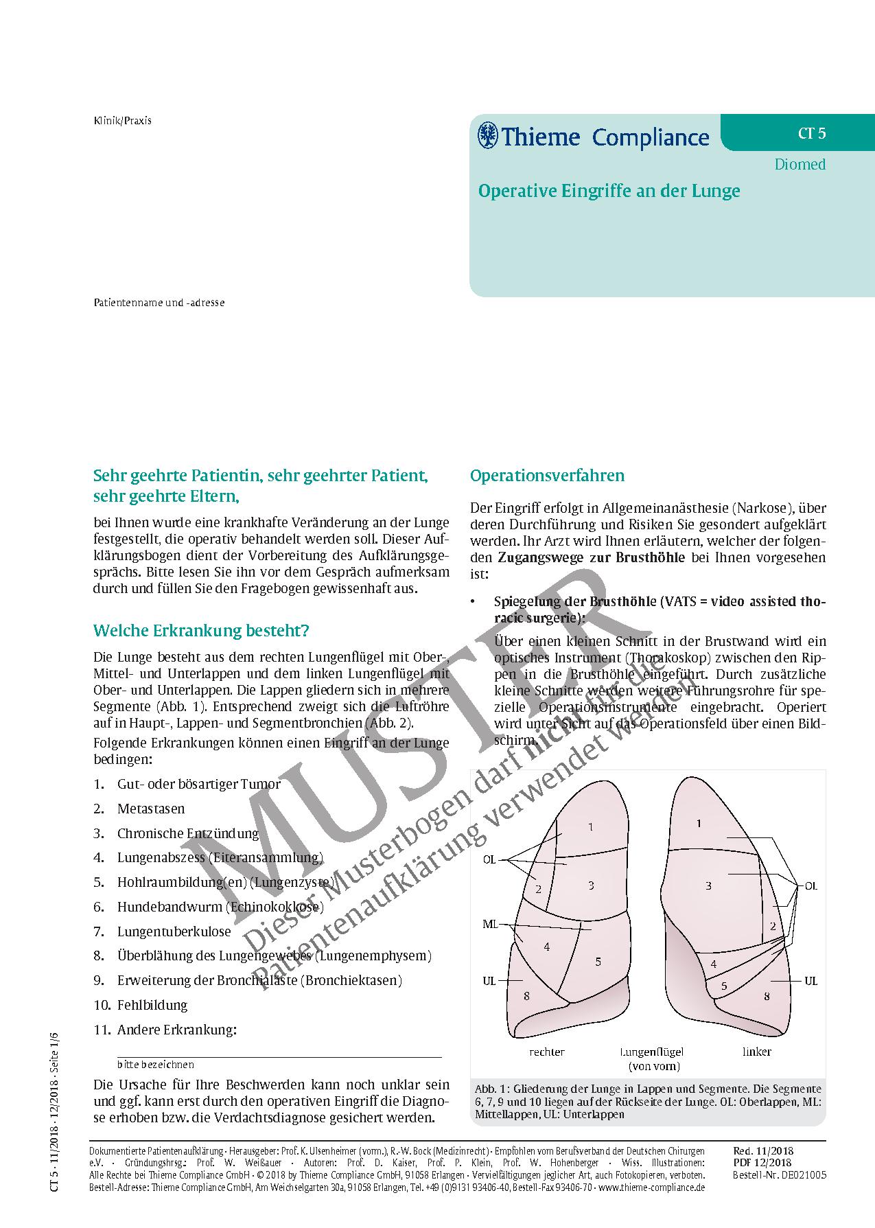 Fein Lage Der Lunge Ideen - Anatomie Ideen - finotti.info