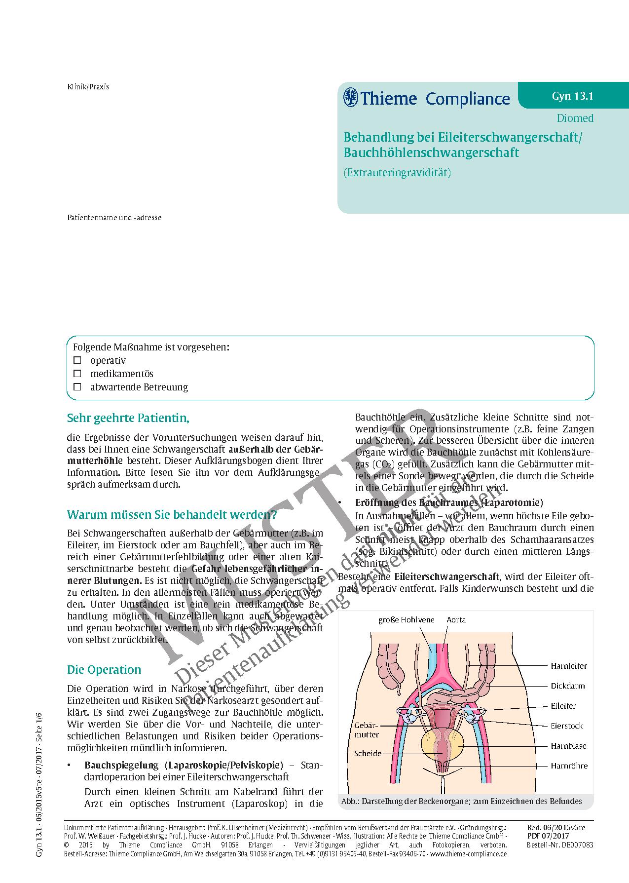 Berühmt Eileiter Fotos - Physiologie Von Menschlichen Körperbildern ...