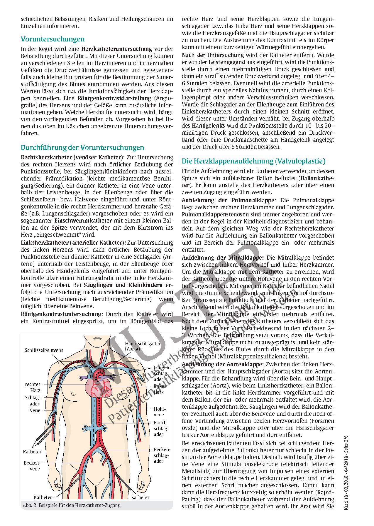 Berühmt Anatomie Der Linken Seite Des Bauches Bilder - Anatomie Von ...