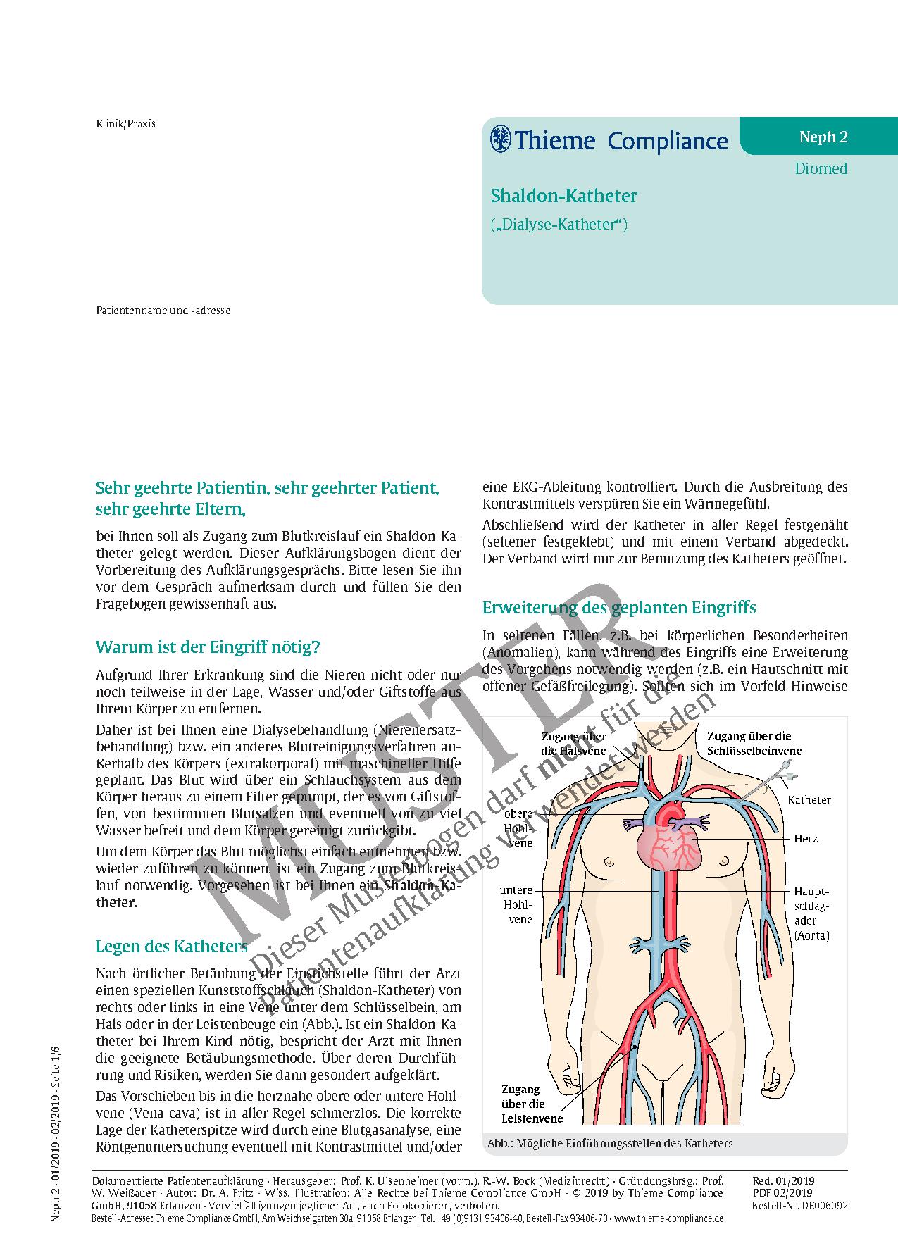 Ausgezeichnet Nieren Anatomische Lage Ideen - Anatomie Ideen ...