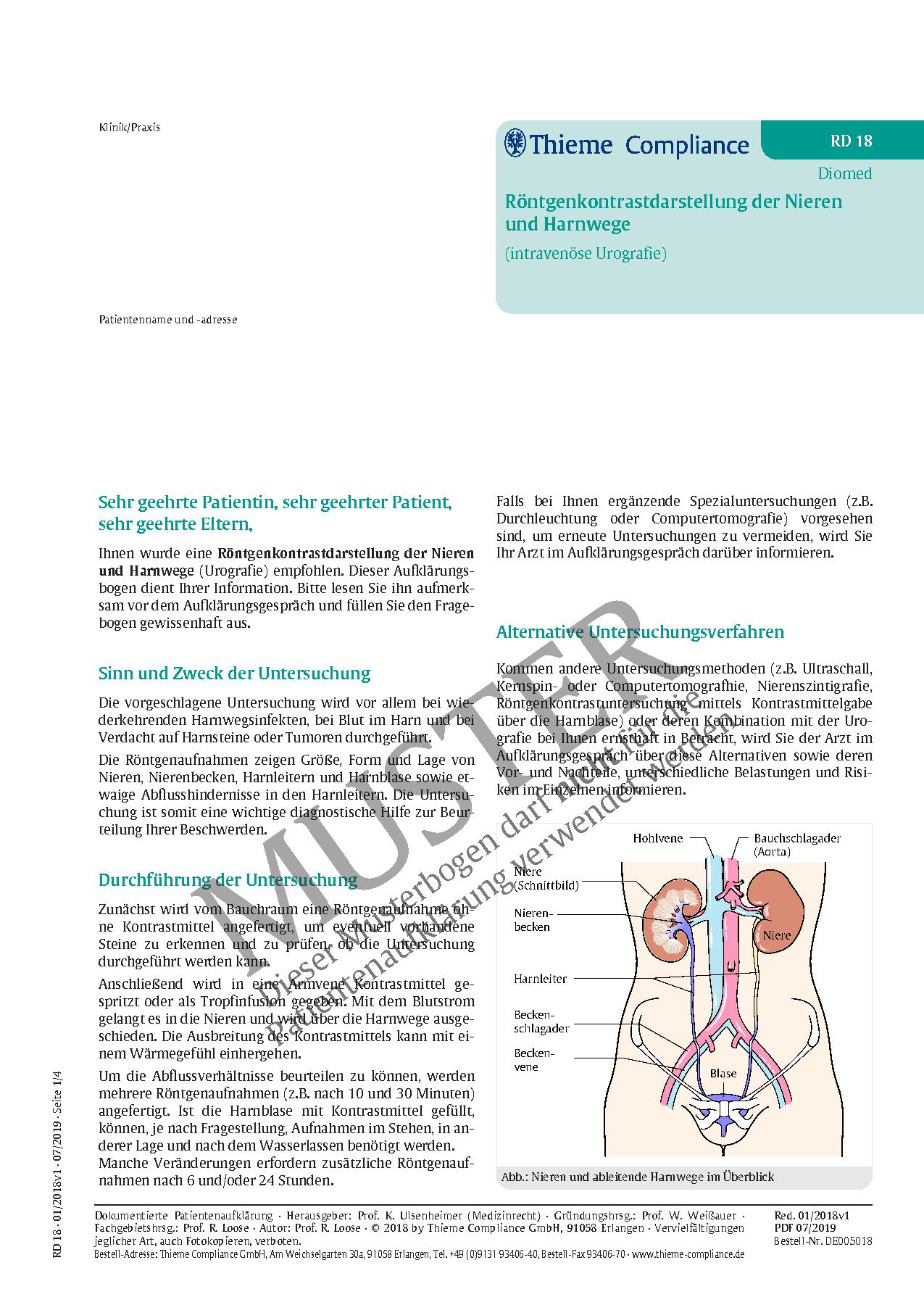 Groß Lage Der Nieren In Körper Bilder - Physiologie Von Menschlichen ...