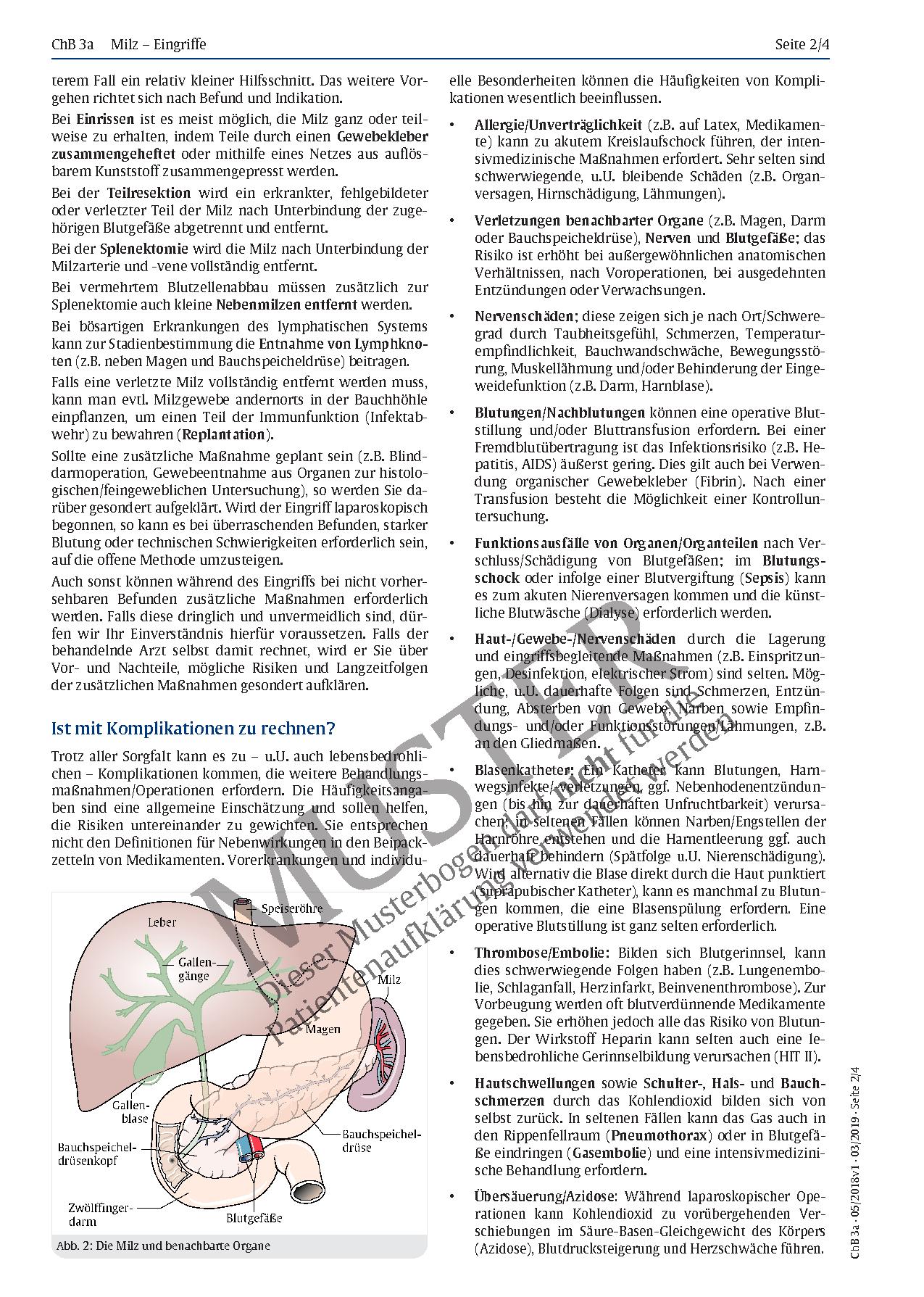 Großzügig Anatomie Der Kamera Zeitgenössisch - Physiologie Von ...