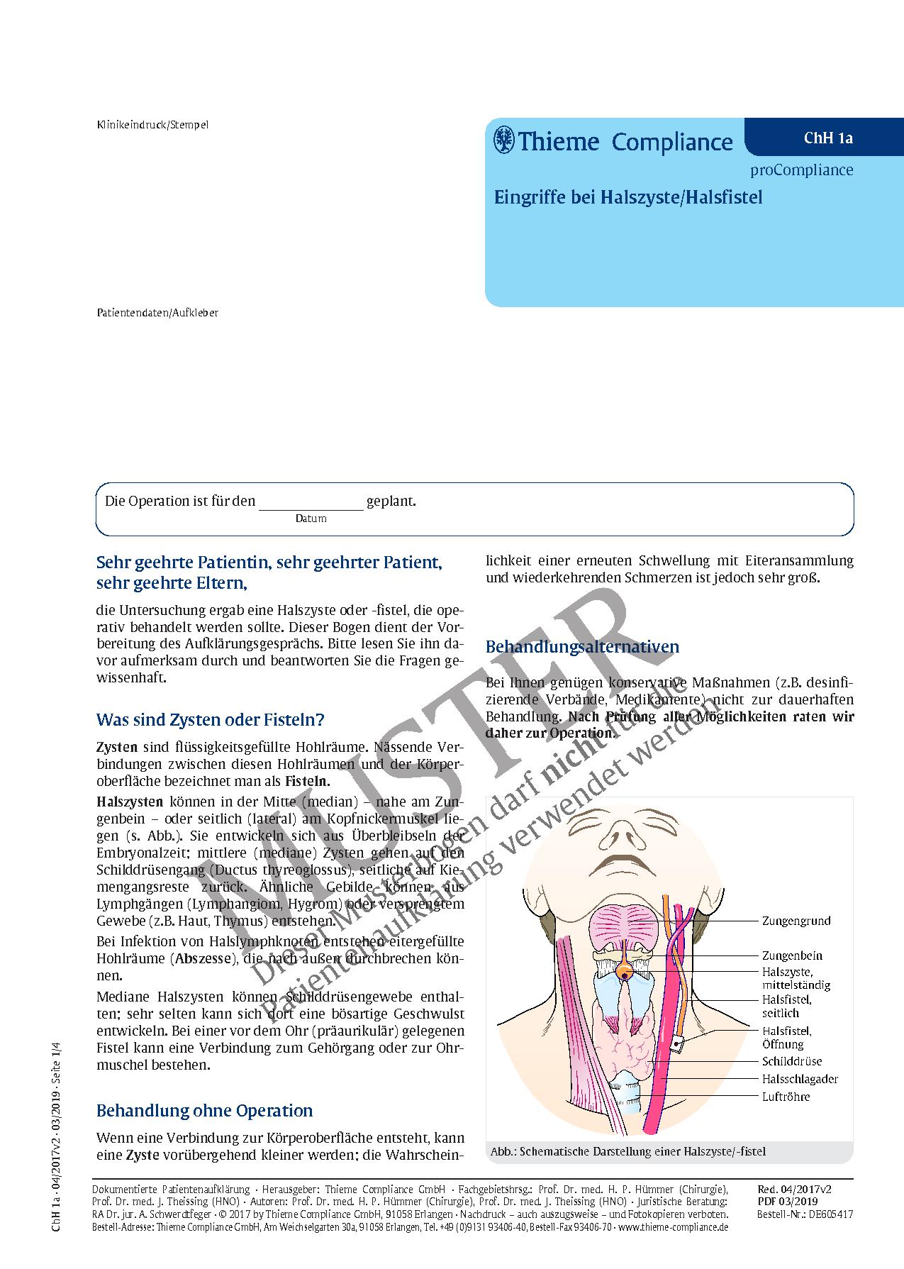 Großartig Gebärmutterhals Anatomie Fotos - Menschliche Anatomie ...