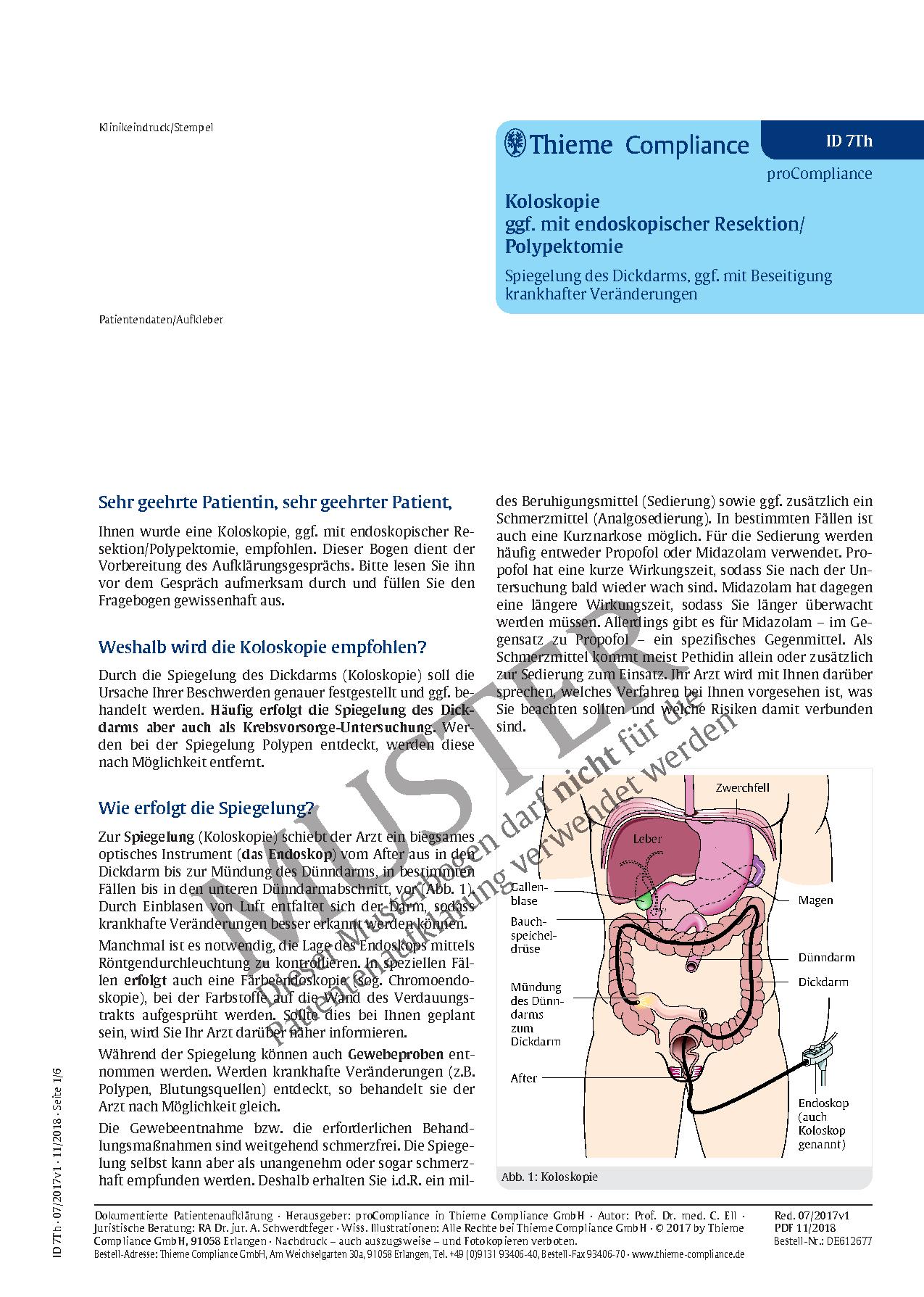 Niedlich Anatomie Rechte Seite Bauch Bilder - Anatomie Von ...