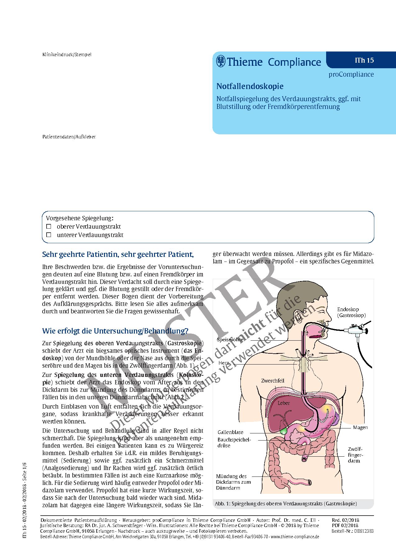Berühmt Bild Des Verdauungstraktes Bilder - Physiologie Von ...