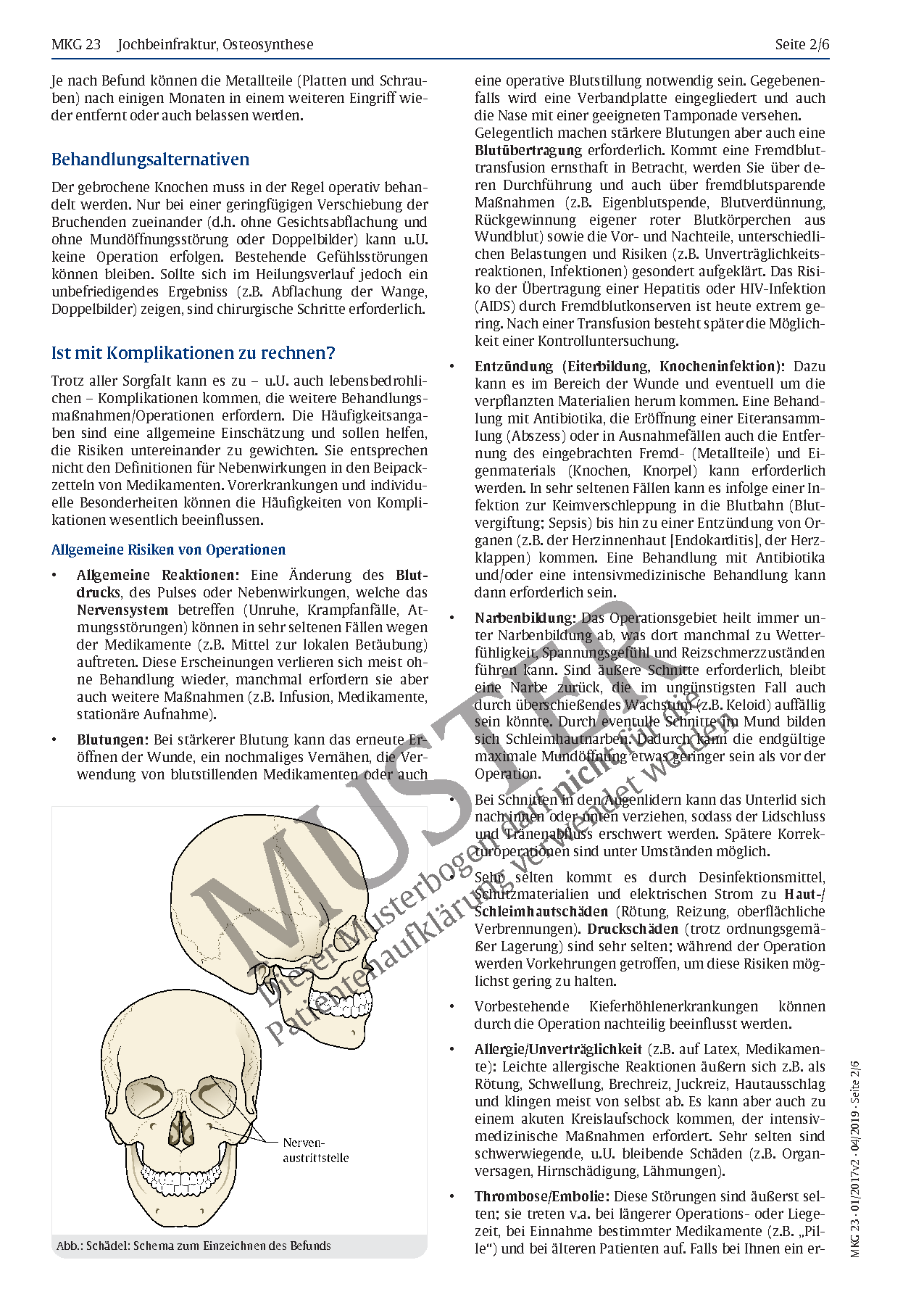 Ungewöhnlich Mittel Und Innenohranatomie Ideen - Anatomie Ideen ...