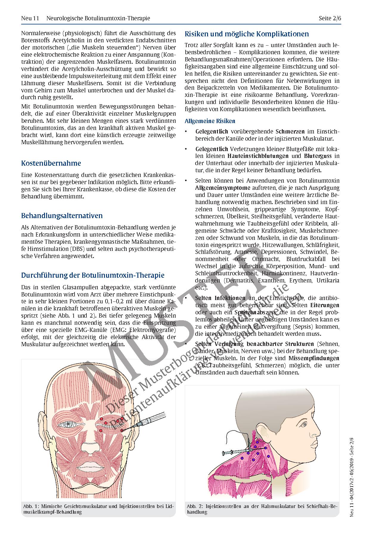 Ausgezeichnet Menschliche Anatomie Halsmuskeln Galerie - Anatomie ...