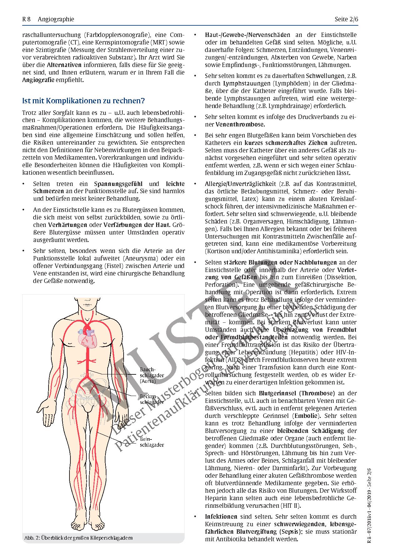 Ziemlich Anatomie Der Blutgefäße Venen Ideen - Anatomie Ideen ...