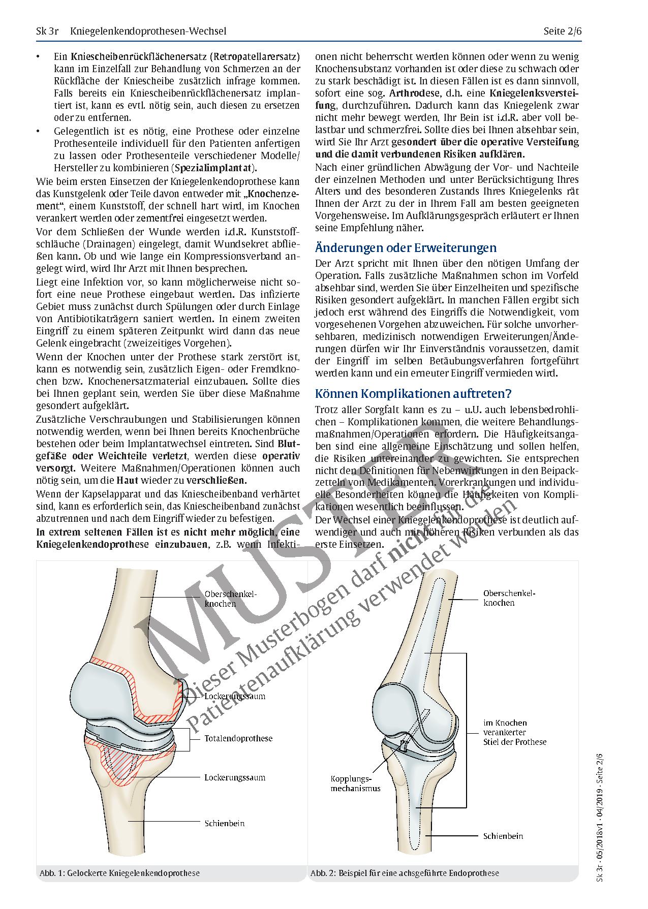 Fantastisch Nerven Im Diagramm Beinen Fotos - Anatomie Von ...