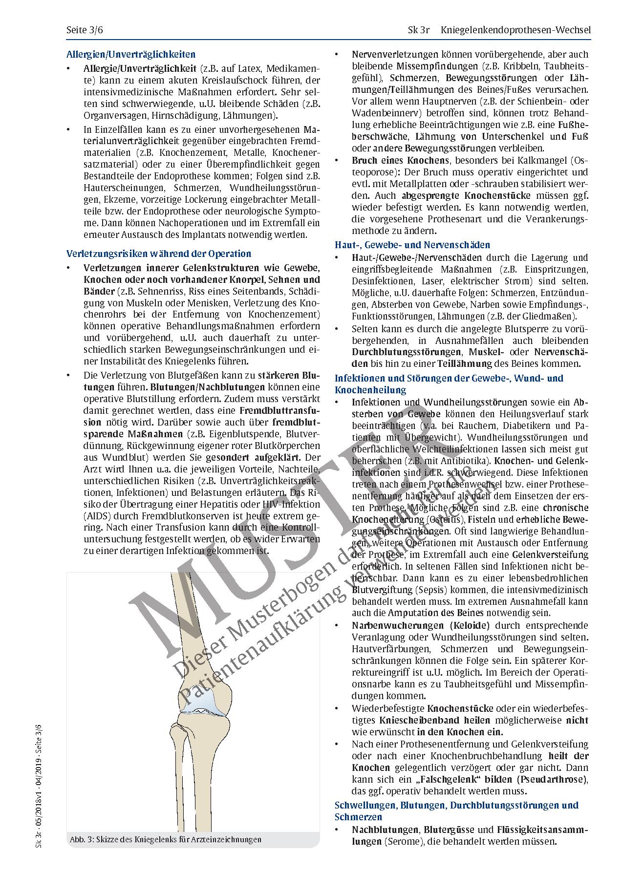 Charmant Anatomie Und Physiologie 6. Ausgabe Pdf Bilder - Anatomie ...
