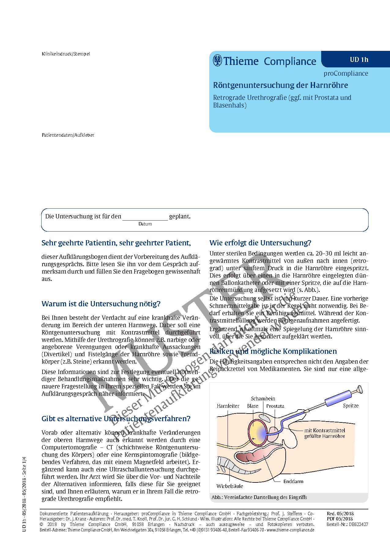 Schön Harnröhre Anatomie Männlich Ideen - Physiologie Von ...